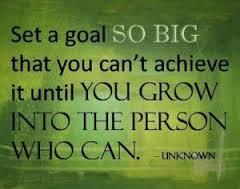 goals 7